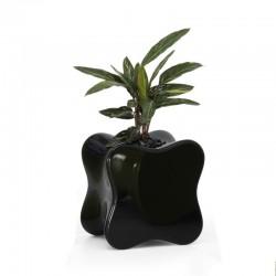 Table Basse Design Doux Vondom Noir