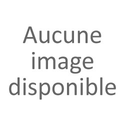 Robot Tondeuse Zucchetti Ambrogio L15 Deluxe pour Jardin 600m2